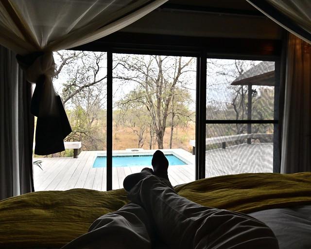 Descansando en el hotel antes del nuevo safari