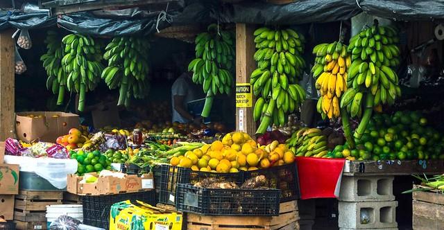 Roadside Fruit & Vegetable Stand