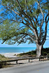 Heading out to Blind Pass Beach on Manasota Key