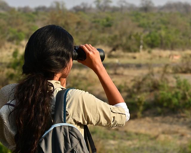 Mirando por prismáticos a animales