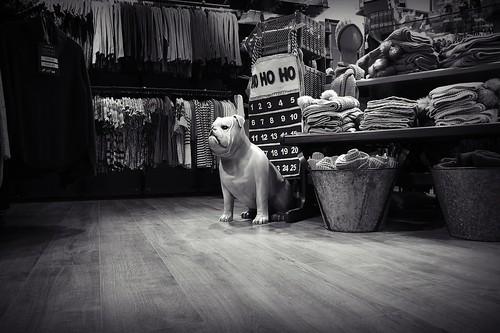 Ho Ho Ho Guard Dog