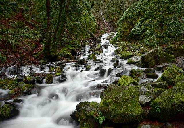 Starvation Creek Falls, January 2020