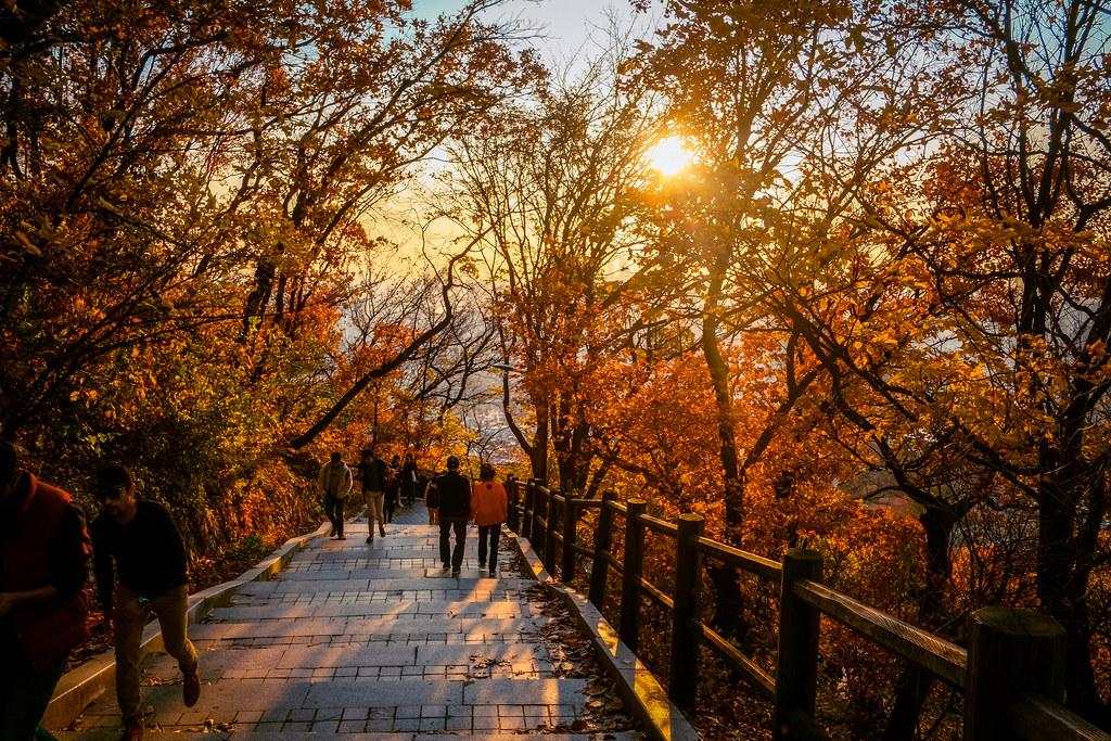 Fall Korea Packing List