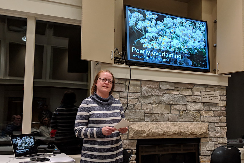 A woman speaking in front of a monitor that shows pearly everlasting flowers.