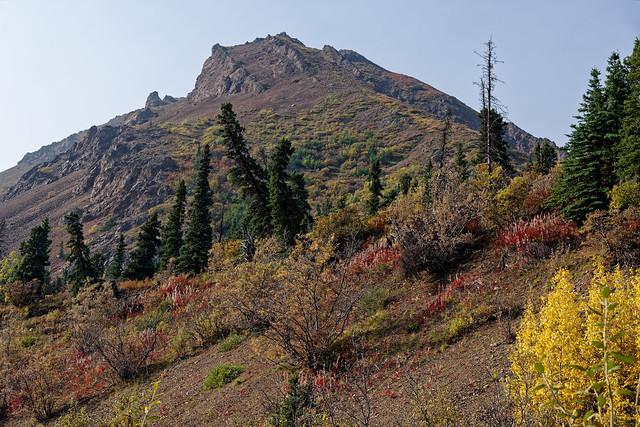"Plan a Trip to Alaska at ""Alaska Go Outside!"" (Denali National Park & Preserve)"