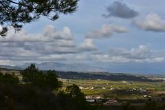 Montserrat des del Mas d'en Coll