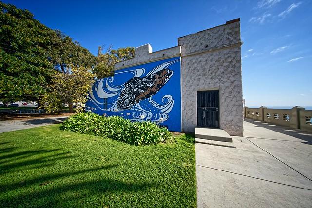 fresque du musée des baleines