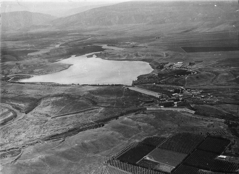 Naharaim-plant-1898-1946-12218v-fixed