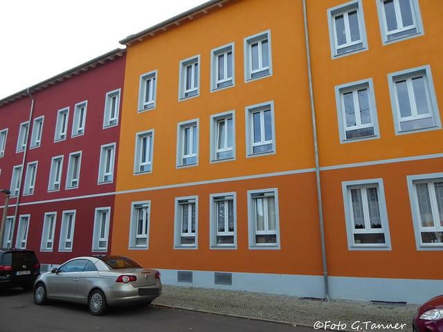 Neujahrswanderung in Halle Saale