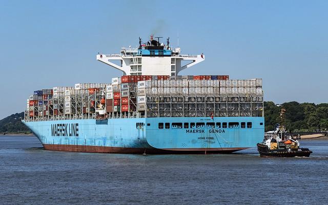 HH Waltershof Maersk Genoa 9739680 Michel