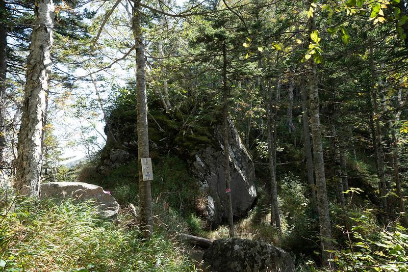 剣山の三の森