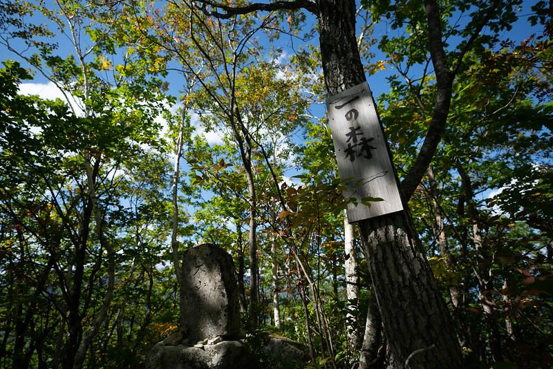 剣山の一の森