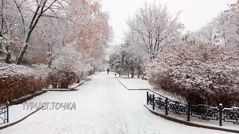 Снег в Ростове
