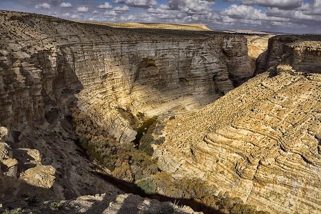 Deserto del Negev canyon Ain Avdat