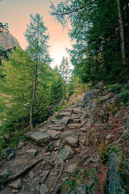 Sur le chemin du Mont Buet depuis Vallorcine