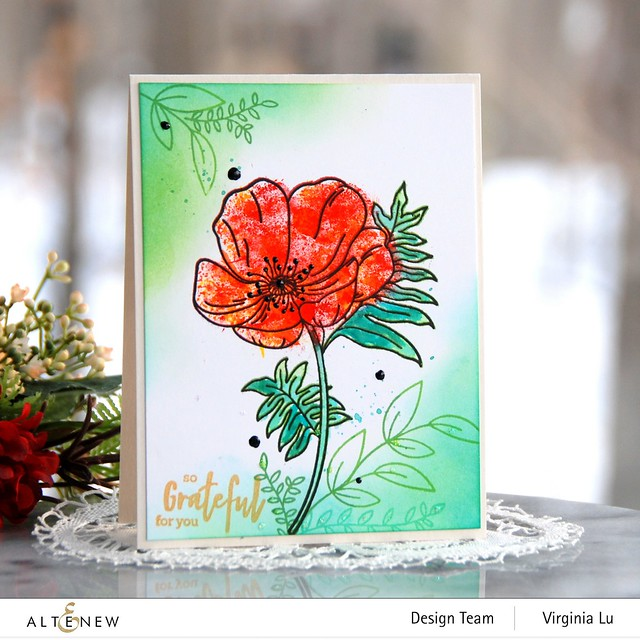 Altenew-Paint-A-Flower-Poppy-Virginia#1