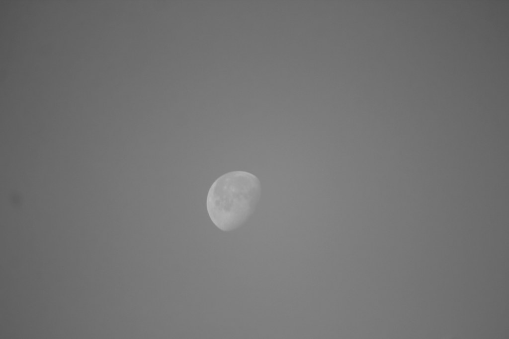 this morning moon
