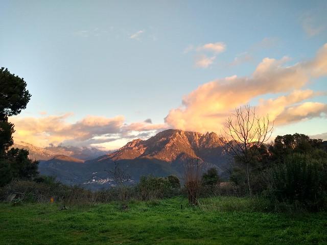 Winter sunset. Too Marc...