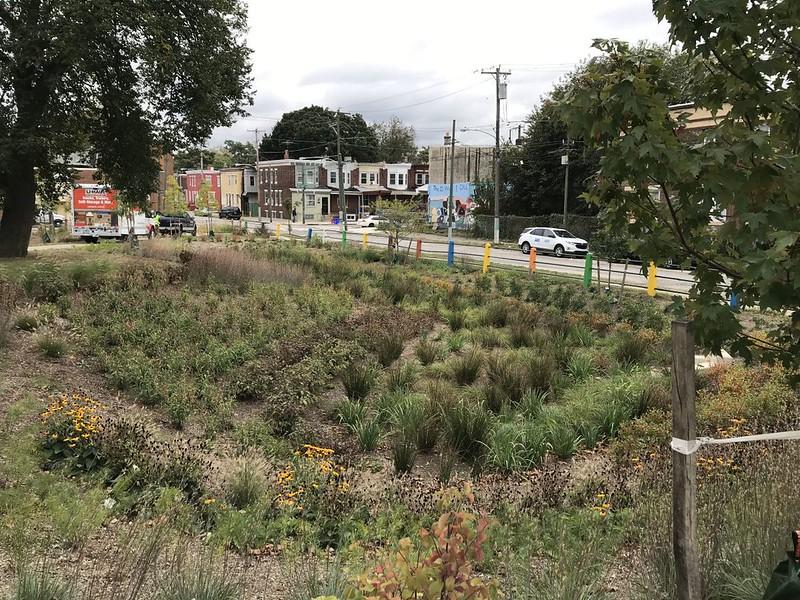 Stenton Park project