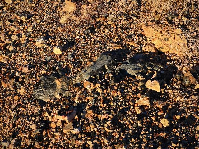 Obsidian Tailings 7D2_3998