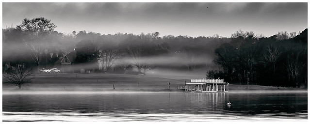 Lake Lanier Fogged In (5471)