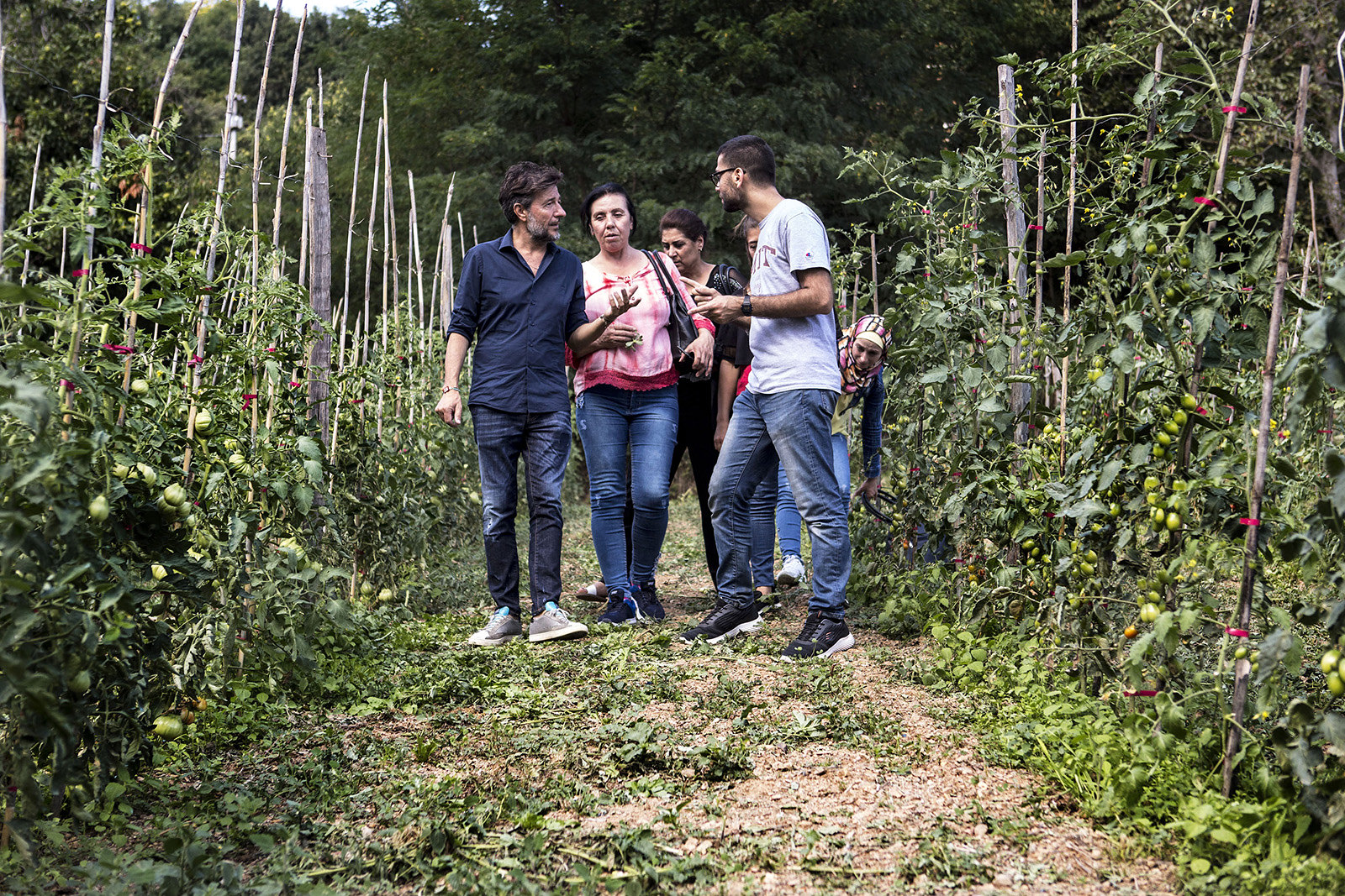 Syrian women farmers learning new skills to produce food