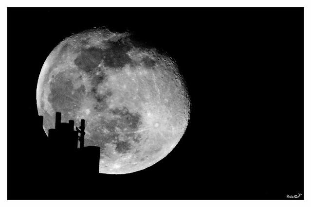 Silhouette nella Luna BW 12-01-20