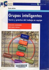 Fernando Cembranos y José Ángel Medina, Grupos inteligentes