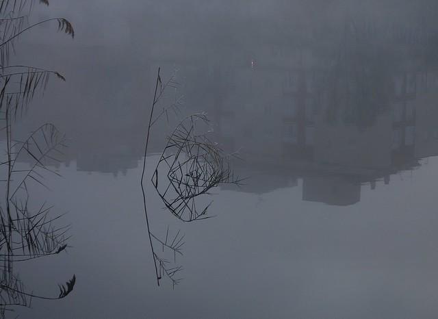 Nieblas, reflejos