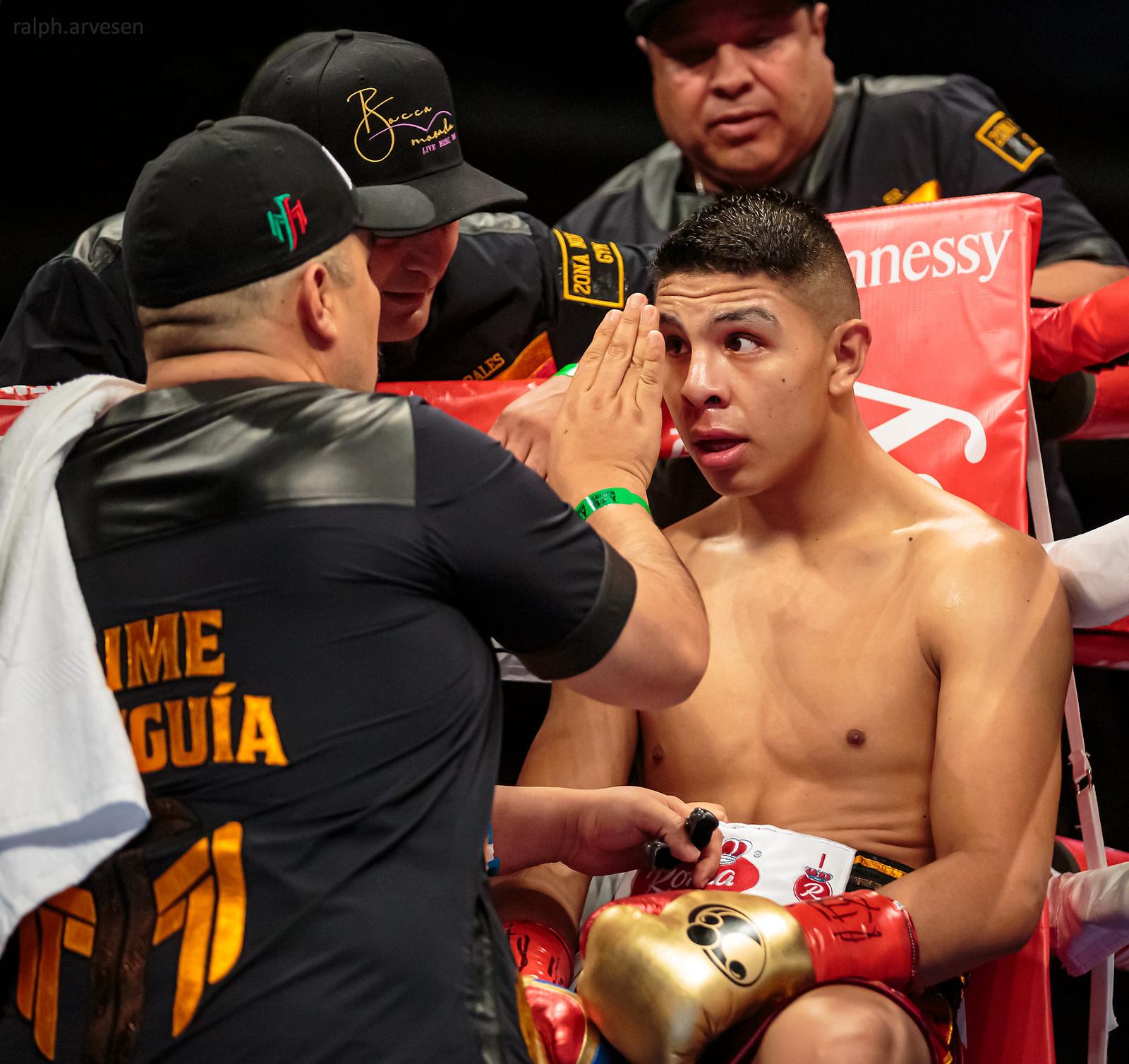 Boxing | Texas Review | Ralph Arvesen