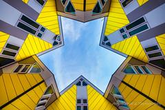 Arquitectura de Rotterdam (Paises Bajos)