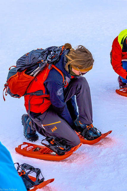 Woman putting on snow shoes for a hike around Storsteinen at Tromso, Norway - 40a