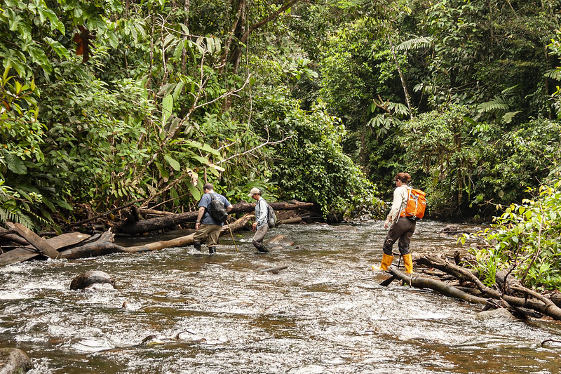 Reserva Pucayacu. Mark Wanner, Kim Hoke, Saar Amstrong