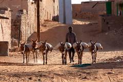 Mauritania, Chinguetti