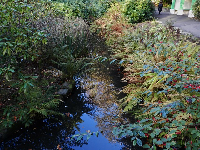 Johnston Gardens, Aberdeen, Oct 2019