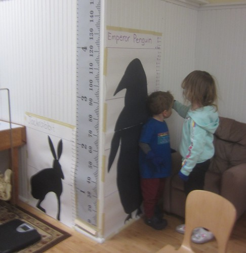 Are you as tall as an emperor penguin?