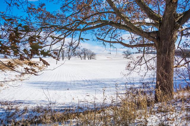 2019 Tomkin Winter-20