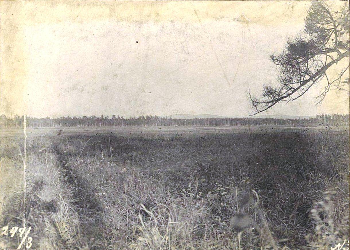 244. Падь реки Ташиной (Забайкальская область)
