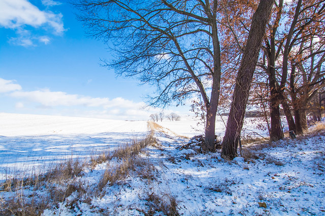 2019 Tomkin Winter-16