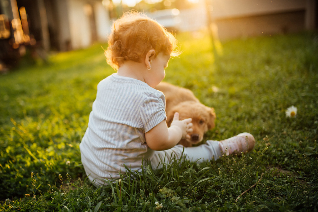 A child sitting in the grass with a dog next to it with su… | Flickr