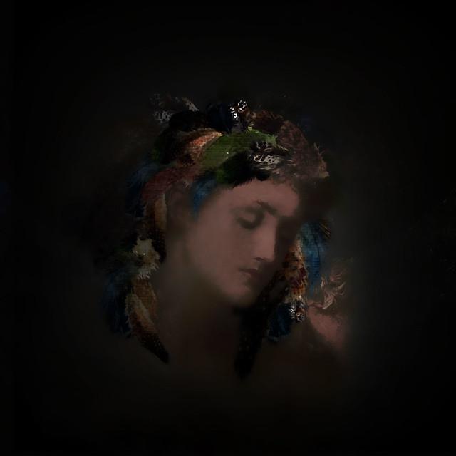 Shealyn in the Dark