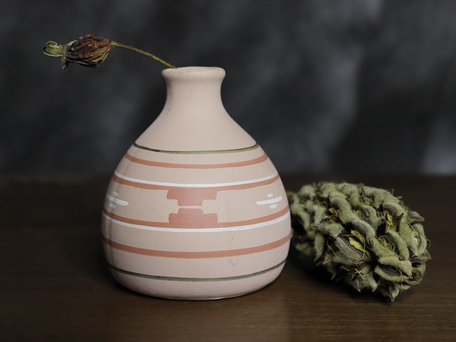 Vase with Rose hip and a Magnolia cone