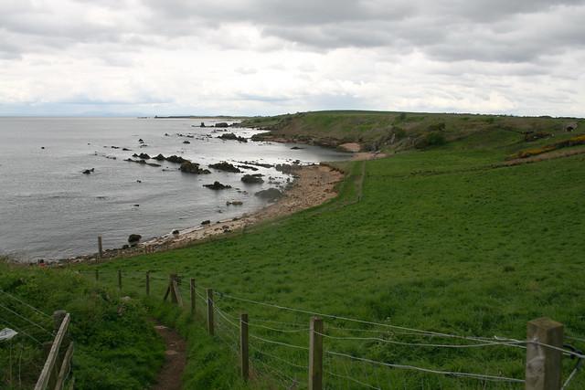 The coast near St Monans