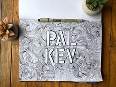 Pal Kev
