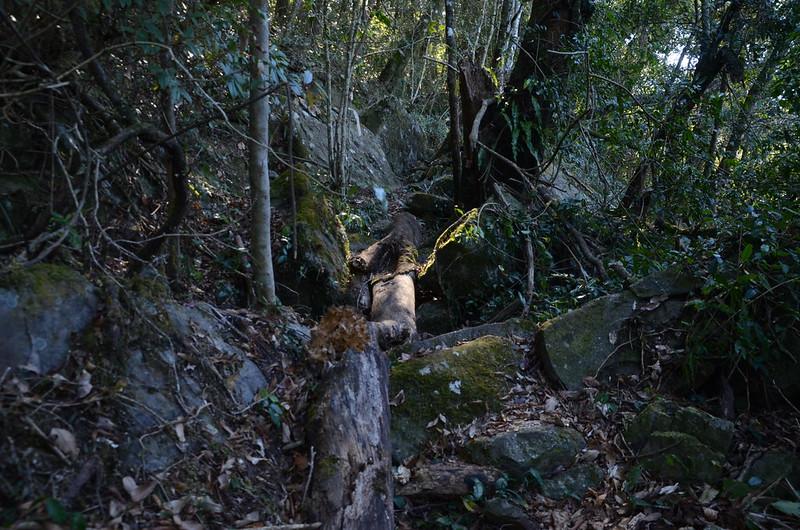 鐵本山步道岩石坡路段 (1)