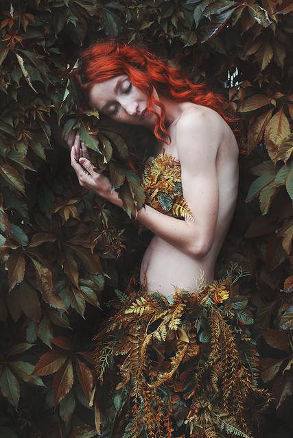 Poison Ivy2.