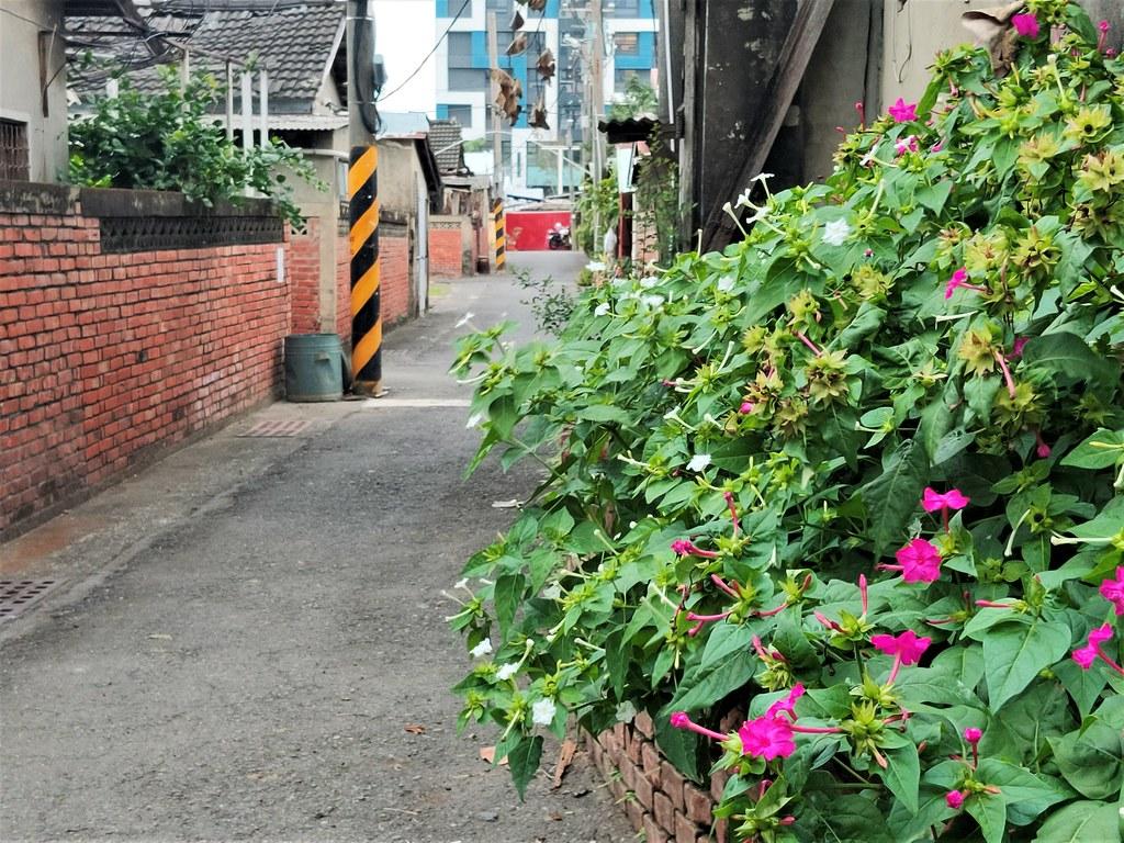 台南市警察新村 (7)