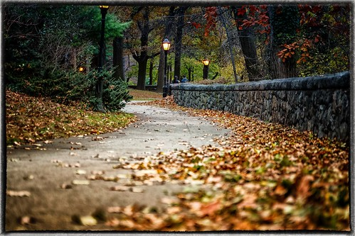 Autumn leaves marked the way that day...
