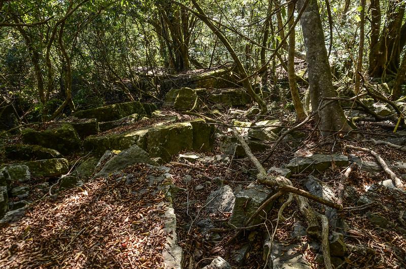 鐵本山步道岩石坡路段 (6)