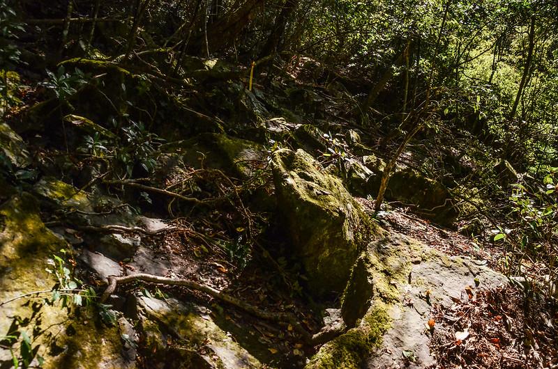 鐵本山步道岩石坡路段 (3)